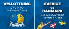 Lottning bordtennis-VM & EM-kval Sverige-Danmark