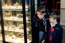 Det händer på Naturhistoriska riksmuseet i mars