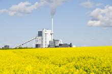 Unikt projekt testar möjligheterna att utvinna bioolja på Örtoftaverket