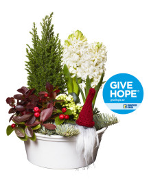 Julgrupp till förmån för Barncancerfonden blev årets storsäljare på Interflora