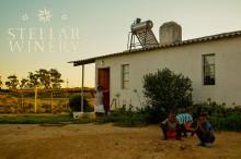 Stellar Winery visar vägen till hållbar utveckling i Sydafrika!