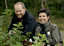 Surrande parker och trädgårdar – nytt samarbete för att pollinera mera