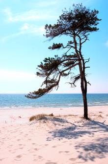 Pressinbjudan:  Regional kustsamverkan ska möta problem med översvämning och erosion i Skåne och Halland