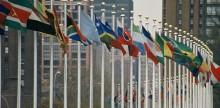 Verdens Skove hylder, at Danmark har underskrevet Parisaftalen