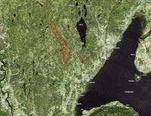 Salg av spredte skogeiendommer