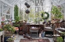 Vansta Trädgård öppnar Showroom