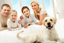 Nearly a third of all renters want a property that allows pets
