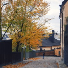 1,1 miljoner gästnätter i november i Stockholm