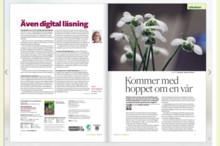 Läs tidningen Hemträdgården - nu även i digitalt format