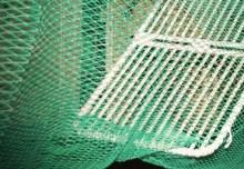 HaV satsar drygt sex miljoner kronor på mer selektivt fiske