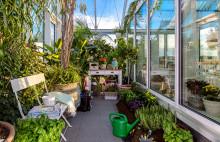 Skogskvarteren – en förebild för miljösmart byggande