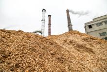 Gabende klima-smuthul: Danmarks CO2-udledning er meget højere end på papiret