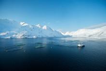Norsk lax – världsbäst i hållbarhet