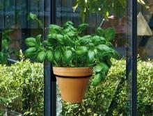 Juliana Gewächshauscentrum präsentiert vertikalen Pflanzentopfhalter