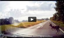 Så hurtigt opstår ulykken på vejen - se video