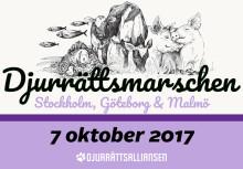 Stor djurrättsmarsch i Stockholm