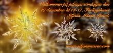 Julmys på Siljans Måsar