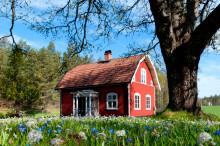 Sommer, Sonne, Schweden: Attraktive Pauschalangebote von Stena Line
