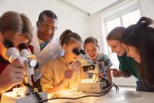 Kika nära på insekter! Det händer på Naturhistoriska riksmuseet i mars