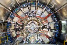 Wallenberganslag ökar kunskap om elementarpartiklar och cellers molekylära liv