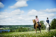​St. Olavsleden on horseback from Sweden to Norway