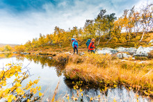 Adventure Sweden in Epic Trails