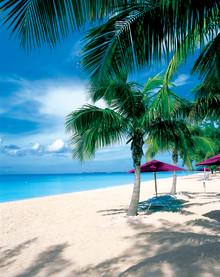 Ny undersökning: Prinsessan Madeleine och Chris O'Neills smekmånad går till Västindien