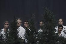 Välkommen att recensera Birgitta Egerbladhs föreställning Innan träden faller, urpremiär 9 mars