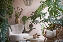 Interflora satsar på stora gröna växter!