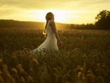Into the fields med Skaga