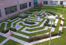 Locum värnar om utemiljön på våra sjukhus