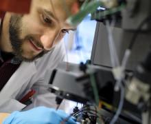 Nya steg mot DNA-kodade cellfabriker som tillverkar skräddarsydda material