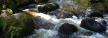 Ny satsning på forskning inom vattenkraft