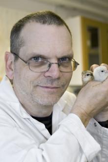 Stort stöd till forskning om husdjurens välfärd