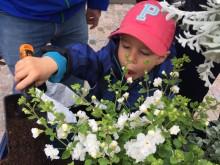 Barnen var trädgårdsmästare på Balkongens dag