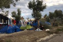 EU:s avtal med Turkiet skadar människors hälsa