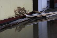 Undgå skimmelsvamp efter stormflod
