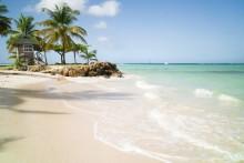 Rejs nemt til Trinidad & Tobago hele året
