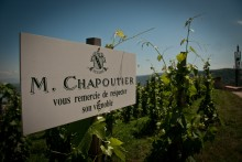 MAISON CHAPOUTIER NYSATSAR MED LIVELY WINES!