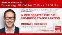 Michael Schrodi in der aktuellen Bundestagsdebatte