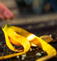 Brightonrestaurang går i bräschen för nolltolerans mot avfall