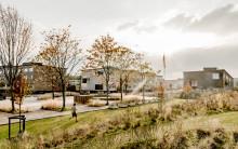 Sønderparken i Fredericia shortlistet til RENOVER prisen 2019
