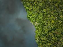 Flussblindheit: Der Wurm, der einen erblinden lässt