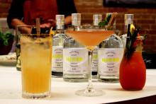 Njord Gin lancerer eksklusiv NorthSide-gin med urter fra Ådalen