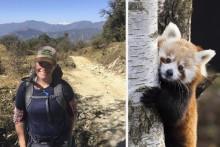 Kolmården i Nepal för att skydda röda pandor