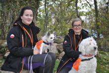 Ronneby först i länet med att erbjuda terapihund som behandlingsmetod