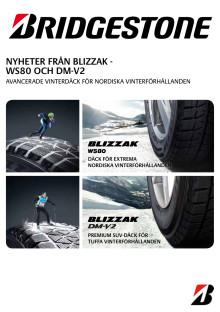 Produktblad Blizzak WS80 / DM-V2