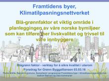 Temamøte Overvann - Blå-Grønn faktor - Pedro Ardila, Bærum kommune