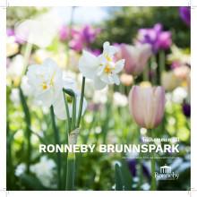Ronneby Brunnsparks historia i korthet