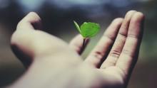 Der letzte Wille als gute Tat  - Stiftung MyHandicap und SOS-Kinderdorf e.V. informieren